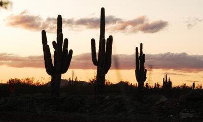 Black Mountain BMX, site of the 2020 Desert Classic BMX Nationals